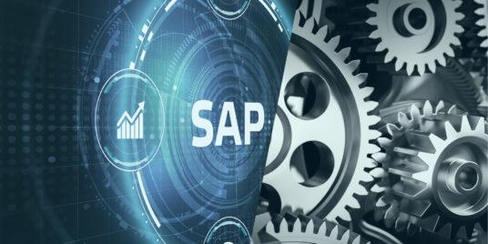 SAP Integrative Geschäftsprozesse der Fertigungsindustrie