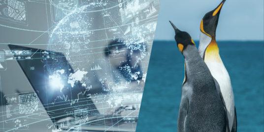 Linux-Systemanpassungen